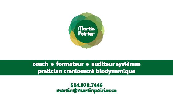 Martin Poirier